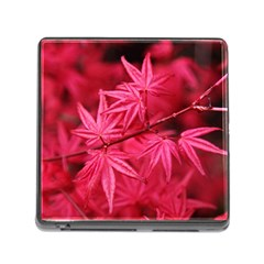 Red Autumn Memory Card Reader With Storage (square) by ADIStyle