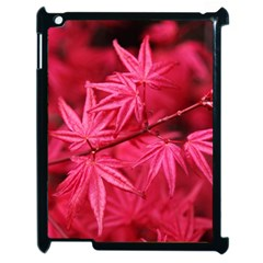 Red Autumn Apple Ipad 2 Case (black) by ADIStyle