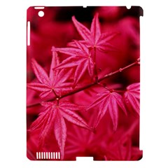 Red Autumn Apple Ipad 3/4 Hardshell Case (compatible With Smart Cover)