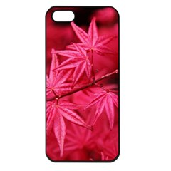 Red Autumn Apple Iphone 5 Seamless Case (black) by ADIStyle
