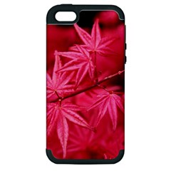 Red Autumn Apple Iphone 5 Hardshell Case (pc+silicone)