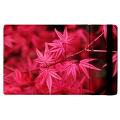 Red Autumn Apple Ipad 2 Flip Case by ADIStyle