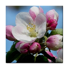 Apple Blossom  Ceramic Tile by ADIStyle