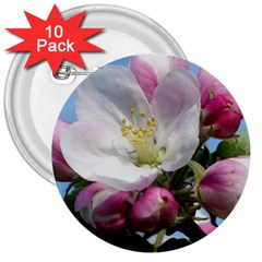 Apple Blossom  3  Button (10 Pack) by ADIStyle