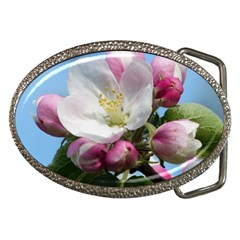 Apple Blossom  Belt Buckle (oval) by ADIStyle