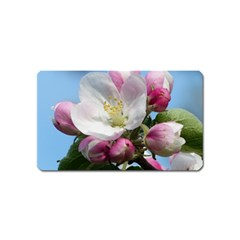 Apple Blossom  Magnet (name Card) by ADIStyle