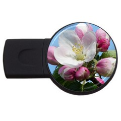 Apple Blossom  2gb Usb Flash Drive (round)