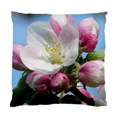 Apple Blossom  Cushion Case (two Sides) by ADIStyle