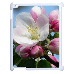 Apple Blossom  Apple Ipad 2 Case (white) by ADIStyle