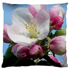 Apple Blossom  Large Cushion Case (two Sides) by ADIStyle