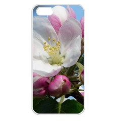 Apple Blossom  Apple Iphone 5 Seamless Case (white) by ADIStyle