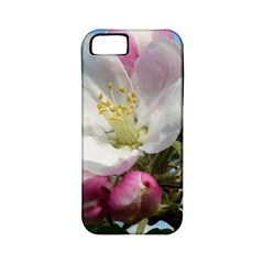Apple Blossom  Apple Iphone 5 Classic Hardshell Case (pc+silicone) by ADIStyle