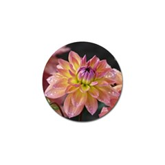 Dahlia Garden  Golf Ball Marker 10 Pack by ADIStyle