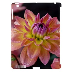 Dahlia Garden  Apple Ipad 3/4 Hardshell Case (compatible With Smart Cover) by ADIStyle