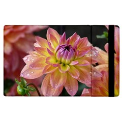 Dahlia Garden  Apple Ipad 3/4 Flip Case