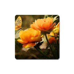 Flowers Butterfly Magnet (square) by ADIStyle