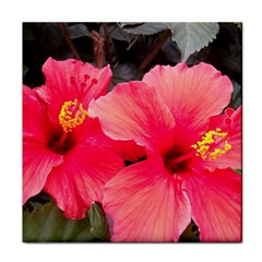 Red Hibiscus Ceramic Tile by ADIStyle