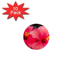 Red Hibiscus 1  Mini Button Magnet (10 Pack)