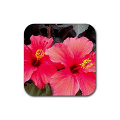 Red Hibiscus Drink Coaster (square) by ADIStyle