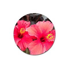 Red Hibiscus Magnet 3  (round) by ADIStyle