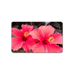 Red Hibiscus Magnet (name Card) by ADIStyle
