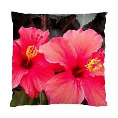 Red Hibiscus Cushion Case (one Side)