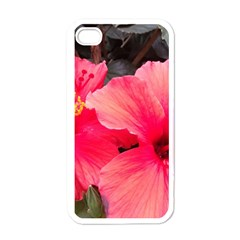 Red Hibiscus Apple Iphone 4 Case (white)