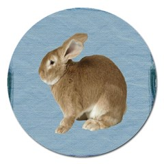 Cute Bunny Magnet 5  (round) by mysticalimages