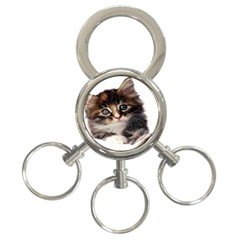 Curious Kitty 3 Ring Key Chain by mysticalimages