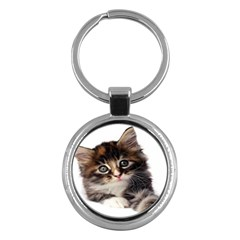 Curious Kitty Key Chain (round) by mysticalimages