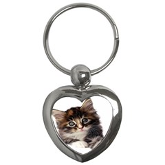 Curious Kitty Key Chain (heart) by mysticalimages