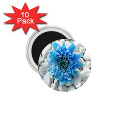 Blue 1 75  Button Magnet (10 Pack)