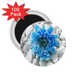 Blue 2 25  Button Magnet (100 Pack)