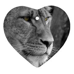 Lion 1 Heart Ornament