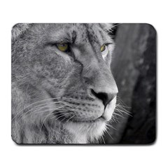 Lion 1 Large Mouse Pad (rectangle) by smokeart