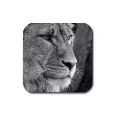 Lion 1 Drink Coaster (square)