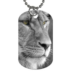 Lion 1 Dog Tag (two Sided)  by smokeart