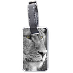 Lion 1 Luggage Tag (one Side) by smokeart