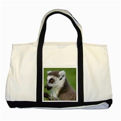 Ring Tailed Lemur  2 Two Toned Tote Bag by smokeart