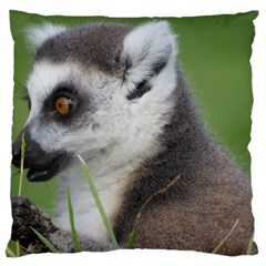 Ring Tailed Lemur  2 Large Cushion Case (two Sides)