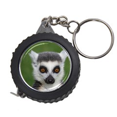 Ring Tailed Lemur Measuring Tape