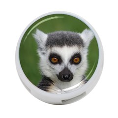 Ring Tailed Lemur 4 Port Usb Hub (one Side)