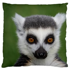 Ring Tailed Lemur Large Cushion Case (two Sides)