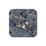 Sea Shells on the Shore Drink Coaster (Square) Front