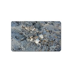 Sea Shells On The Shore Magnet (name Card) by createdbylk