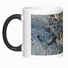 Sea Shells On The Shore Morph Mug by createdbylk