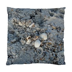 Sea Shells On The Shore Cushion Case (two Sides) by createdbylk
