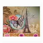 Fuschia Flowers Butterfly Eiffel Tower Vintage Paris Fashion Glasses Cloth (Small, Two Sided) Front