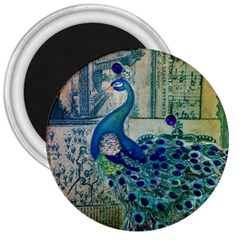 French Scripts Vintage Peacock Floral Paris Decor 3  Button Magnet by chicelegantboutique