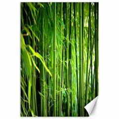 Bamboo Canvas 12  X 18  (unframed) by Siebenhuehner